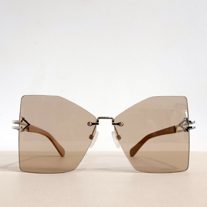 Wanderlust sunglasses with tinted lens